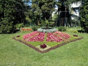Flori de la gradina botanica