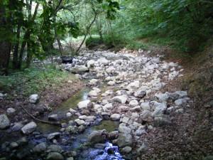 apa curgatoare Cheile Borzesti