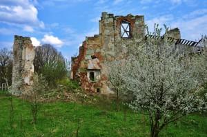 Castelul Kornis prezent