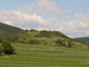 Cetatea-Moldovenesti
