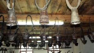 Muzeul bivolului 2