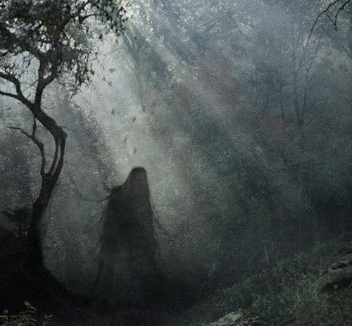 Fantoma in Padurea Hoia - Baciu